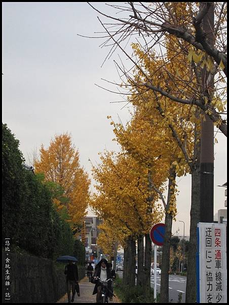 京都大學-校園外街道-1.JPG
