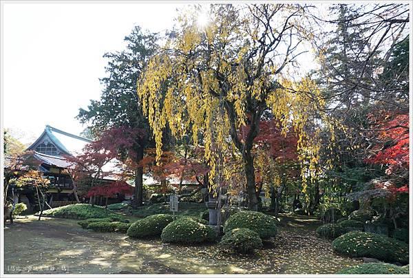 川越-喜多院-紅葉山庭園-2.JPG