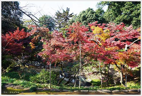 川越-喜多院-紅葉山庭園-3.JPG