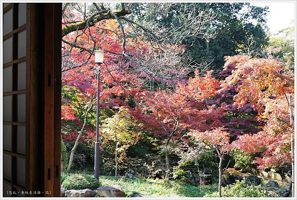 川越-喜多院-紅葉山庭園-6.JPG