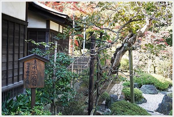 川越-喜多院-紅葉山庭園-7.JPG
