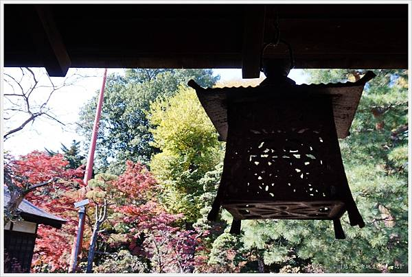川越-喜多院-紅葉山庭園-10.JPG
