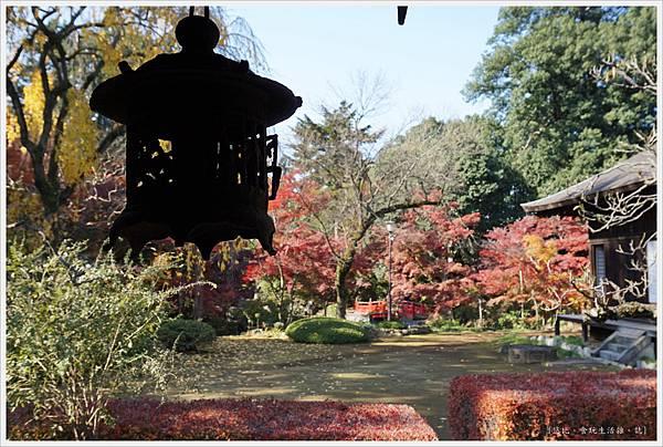 川越-喜多院-紅葉山庭園-20.JPG