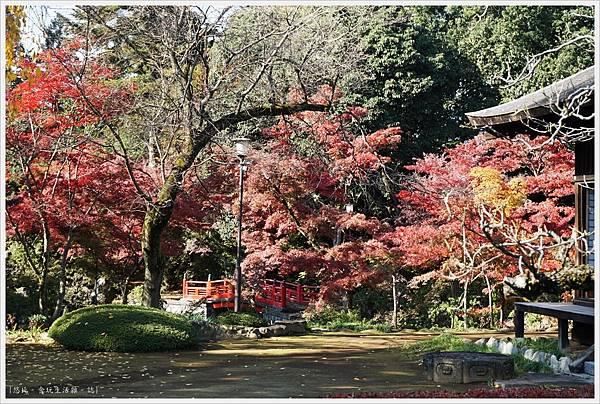 川越-喜多院-紅葉山庭園-21.JPG