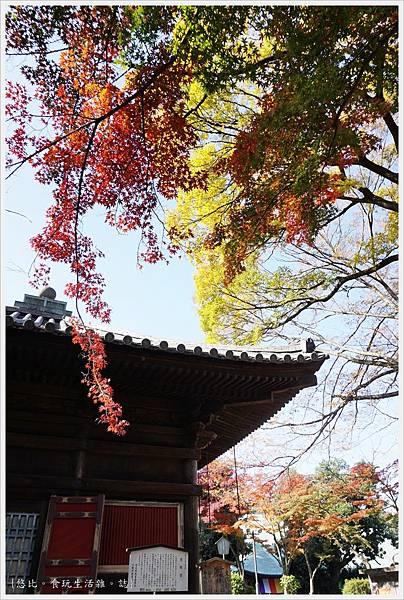 川越-喜多院-慈眼堂-3.JPG