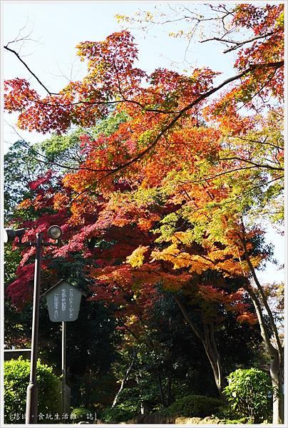 川越-喜多院-慈眼堂-5.JPG