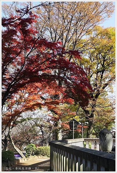 川越-喜多院-慈眼堂-6.JPG