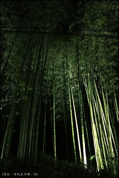 嵐山-竹林-1.JPG