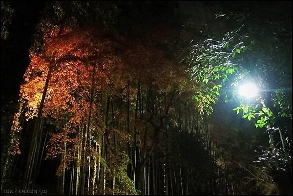 嵐山-竹林-3.JPG