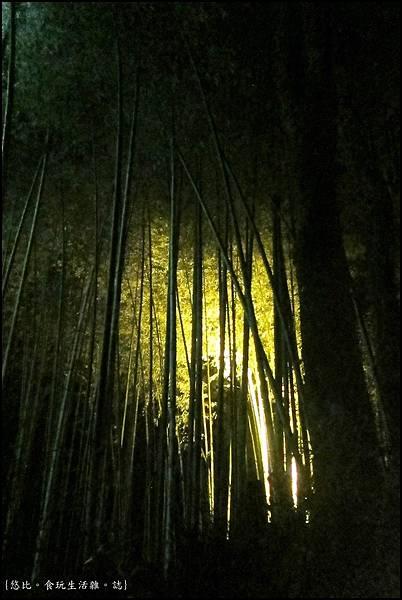 嵐山-竹林-5.JPG