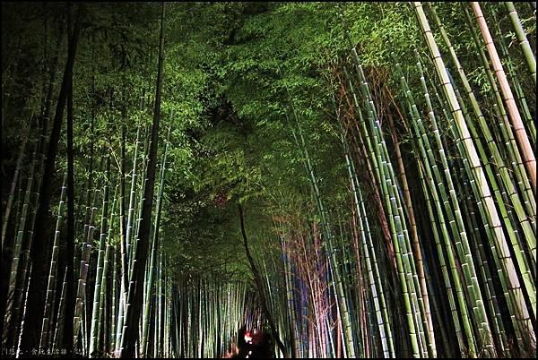 嵐山-竹林-9.JPG