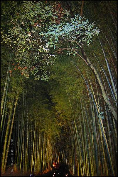 嵐山-竹林-11.JPG