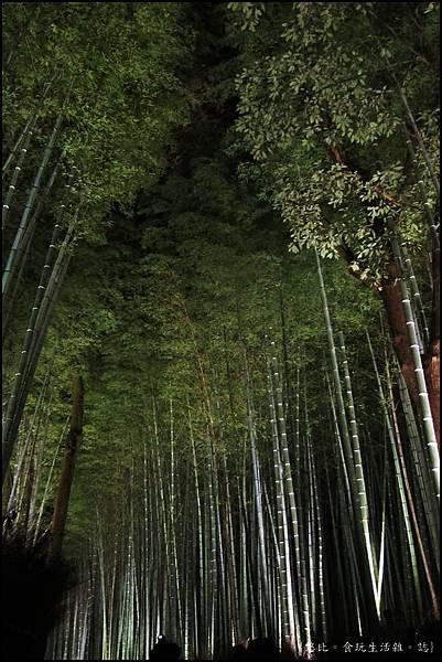 嵐山-竹林-13.JPG