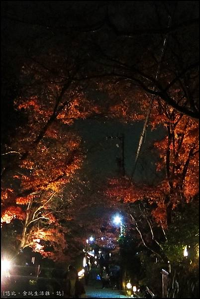嵐山-竹林-19.JPG