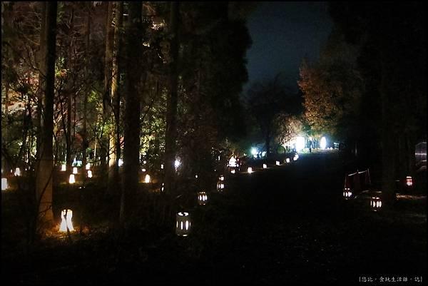 嵐山-竹林-23.JPG