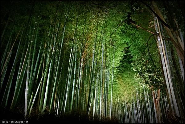嵐山-竹林-26.jpg