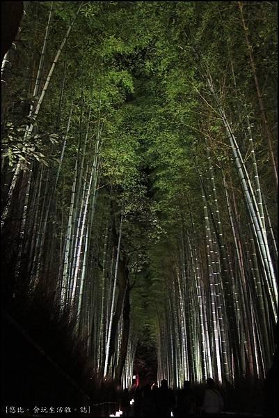 嵐山-竹林-134.JPG