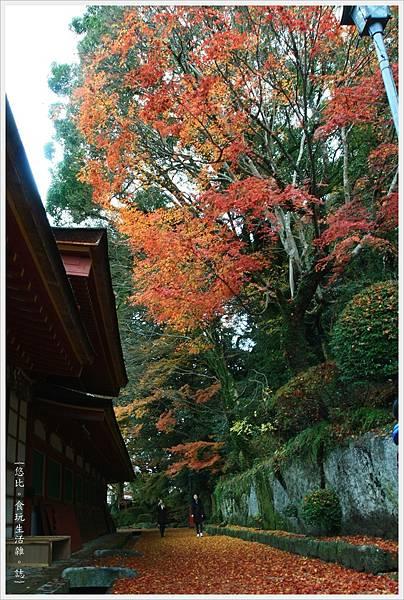 太宰府-本殿旁小徑-3.JPG