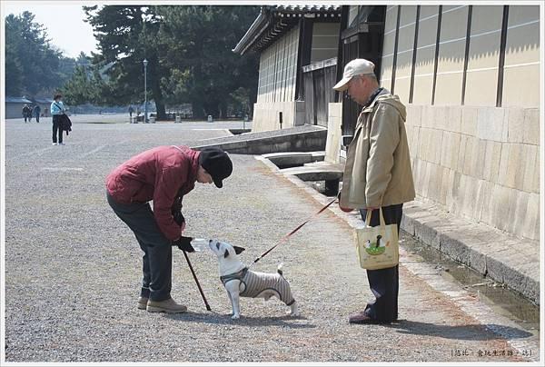 京都御苑-狗狗喝水.JPG