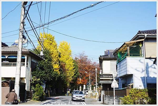 冰川神社-街道-1.JPG