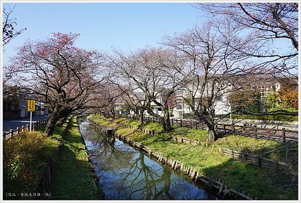 冰川神社-新河岸川-1.JPG