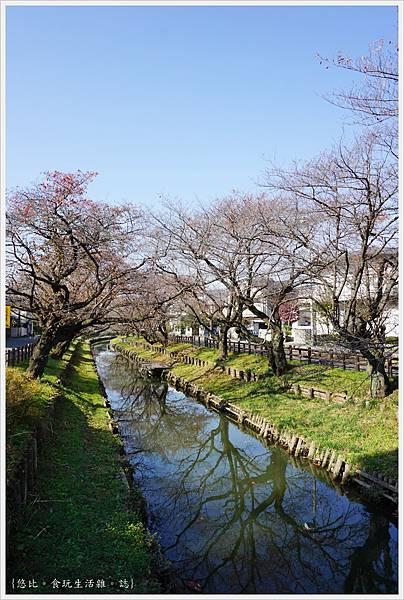 冰川神社-新河岸川-2.JPG