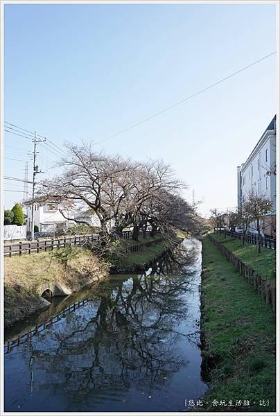 冰川神社-新河岸川-3.JPG