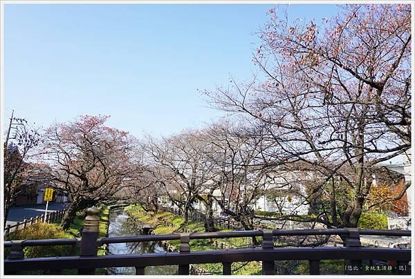 冰川神社-新河岸川-4.JPG