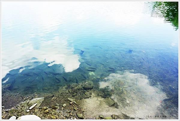 梅花湖-2.JPG