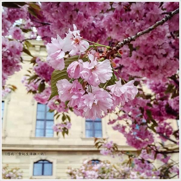 烏茲堡主教宮.jpg