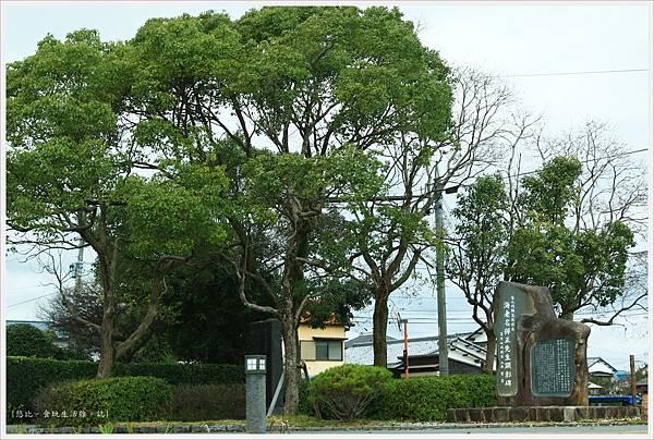 柳川-乘船-43.JPG