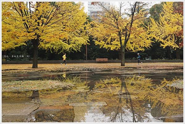 木場公園-19.JPG