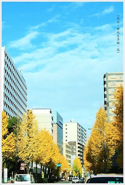 福岡-市區街頭-3.JPG