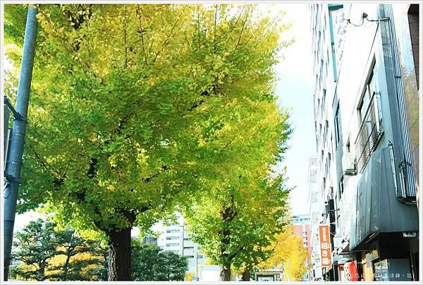 福岡-市區街頭-7.JPG