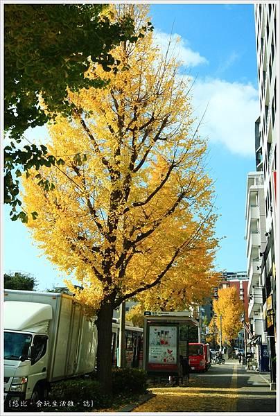福岡-市區街頭-8.JPG
