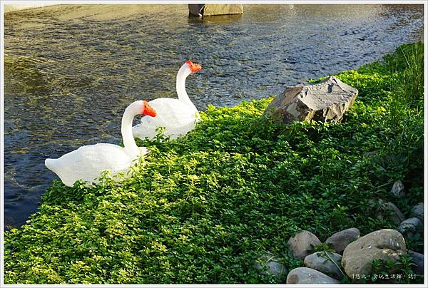 柳川藍帶水岸-白天-10.JPG