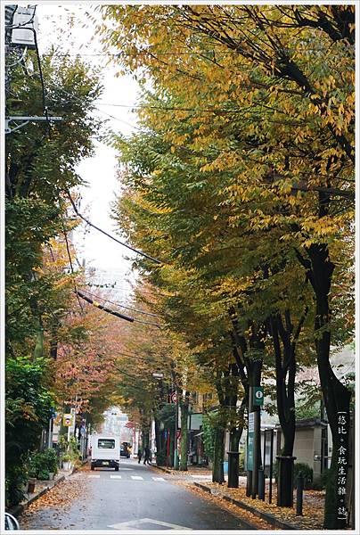 清澄白河-街道-2.JPG