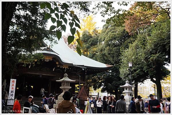 荒川線-鬼子母神堂-38-市集.JPG