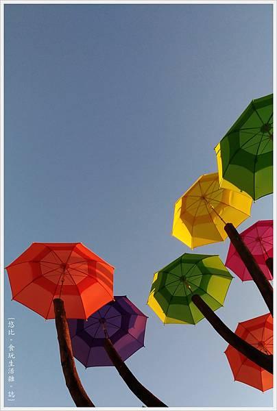 卡里善之樹-46.jpg