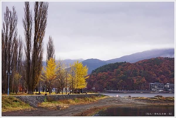 河口湖-大池公園-2.JPG