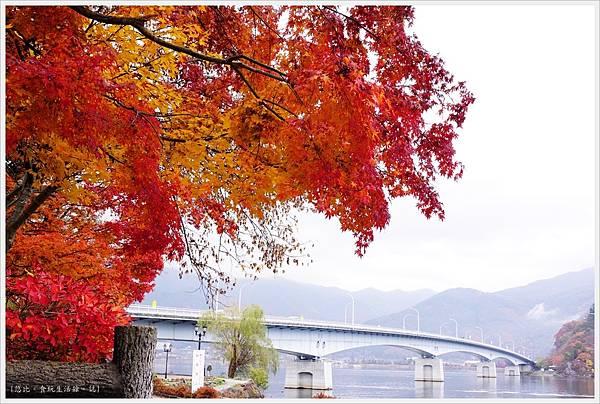 河口湖-大池公園-20.JPG