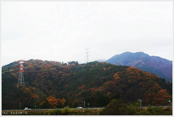 河口湖-沿路風光-5.JPG