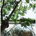 隔壁咖啡-一樓-31.JPG