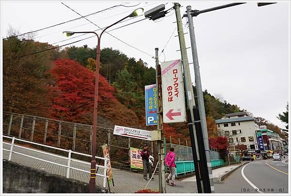 河口湖-天上山公園-2.JPG