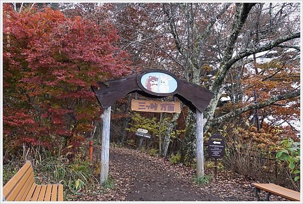 河口湖-天上山公園-23.JPG
