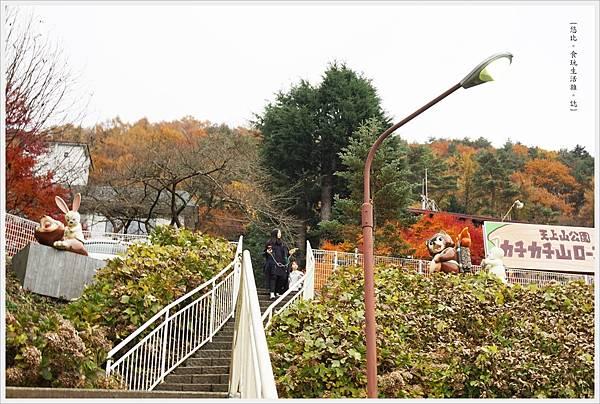 河口湖-天上山公園-66.JPG
