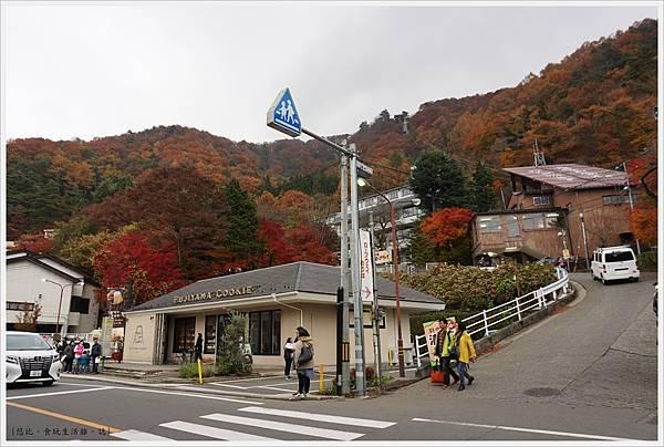 河口湖-天上山公園-71.JPG