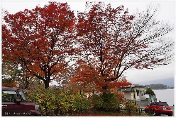 河口湖-天上山公園-74.JPG