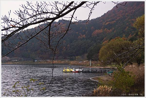 河口湖散策-2.JPG
