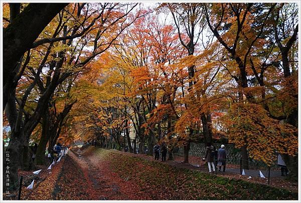 紅葉迴廊-久保田一竹美術館-24